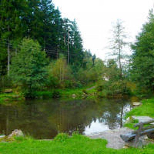 Camping Knaus Viechtach