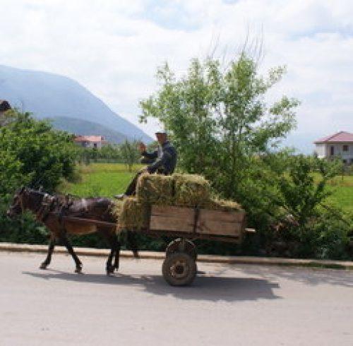 Fietsvakantie Albanië (hotel)